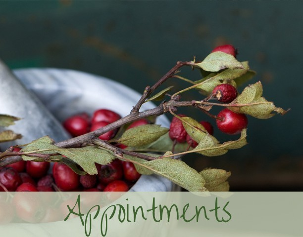 appiontments1