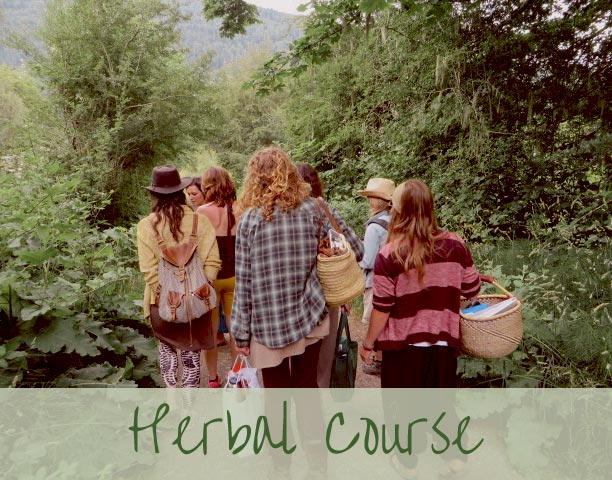 herbal course1