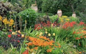A herbaceous border .